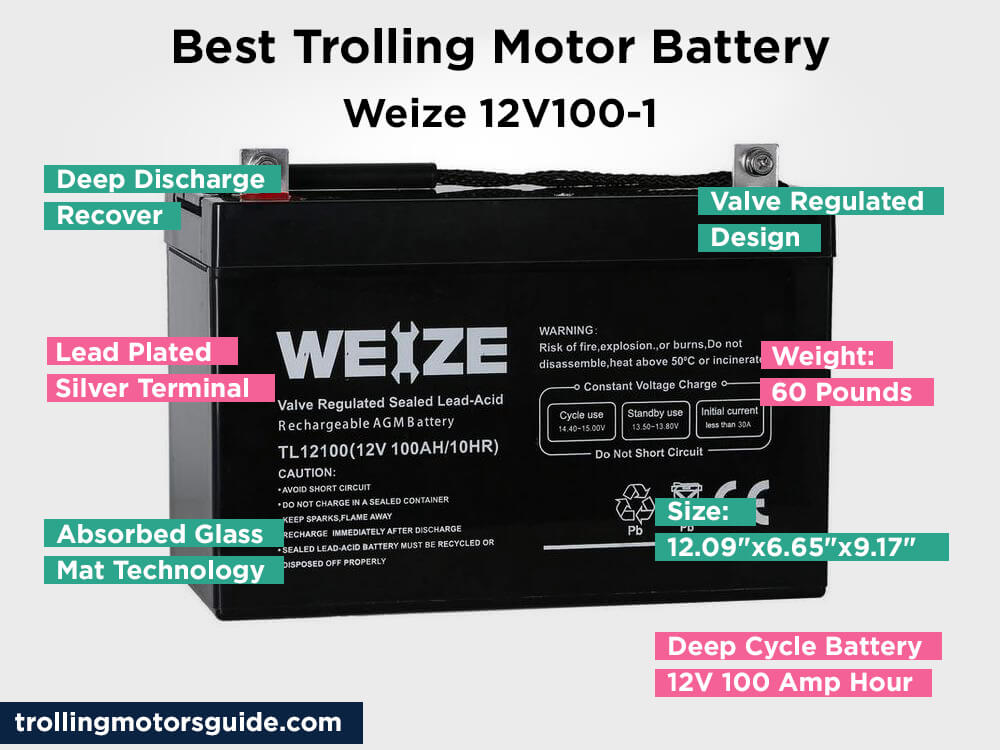 Weize 12V100-1 Review, Pros and Cons